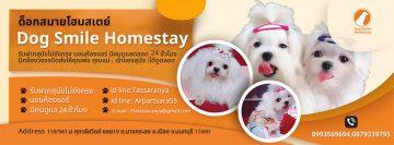 Dog Smile Homestay
